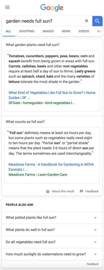 multifaceted-featured-snippets-exemplo